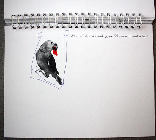 fotoplay-parrot-m-j-bronstein-hospital