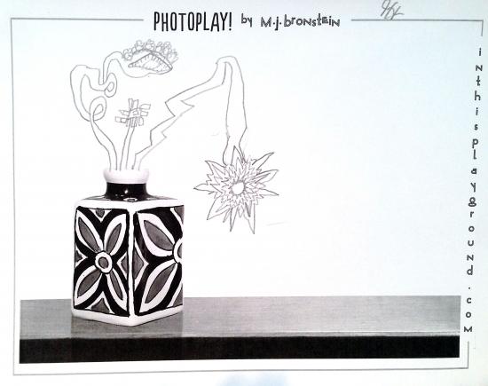 m-j-bronstein_photoplay_gallery_flowers