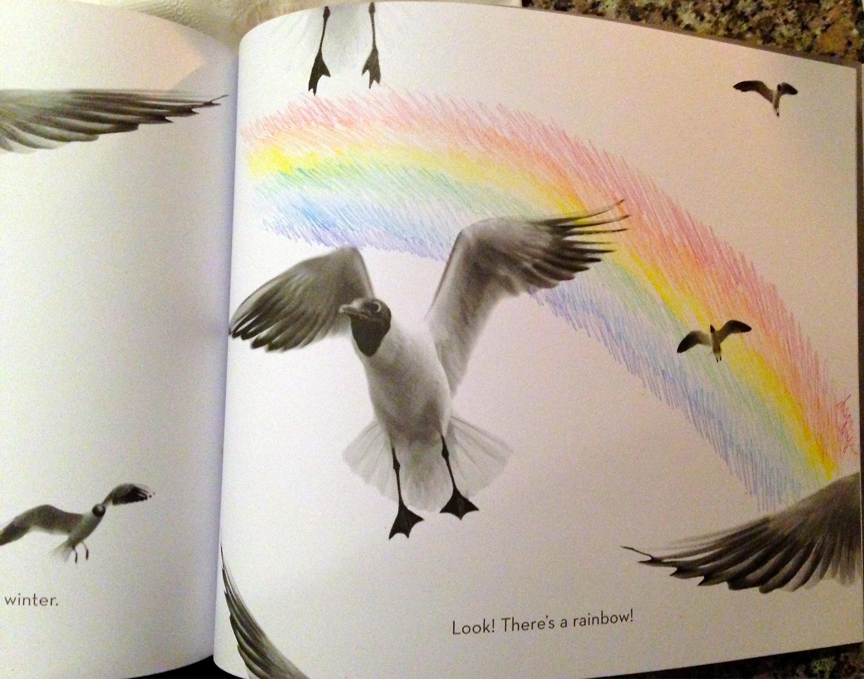 photoplay-bronstein-rainbow