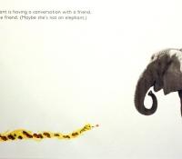 elephant-friend-bronstein-fotoplay-2