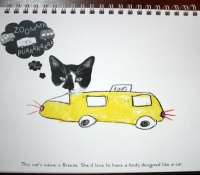 fotoplay-m-j-bronstein-cat-car-taxi