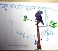 fotoplay-m-j-bronstein-kassie-parrot