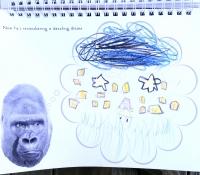 m-j-bronstein-photoplay_gallery_gorilla-dream