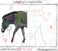marciejanbronstein-fotoplay-in-this-playground-zebra1