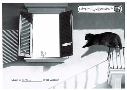 cat-window-fotoplay-m-j-bronstein-poland-2