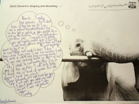 m-j-bronstein-fotoplay-early-stage-sleeping-elephant-2