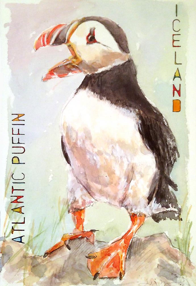 Atlantic-Puffin_M.J.Bronstein-watercolor