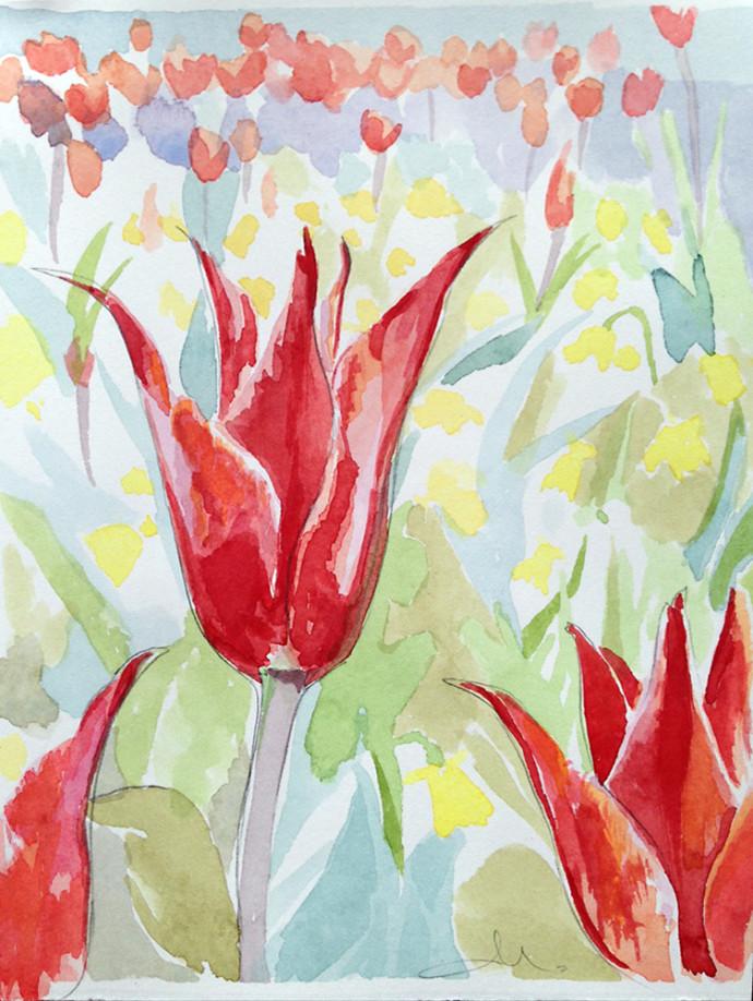 M.J.Bronstein-watercolor-Celebrity-Cruise-tulip
