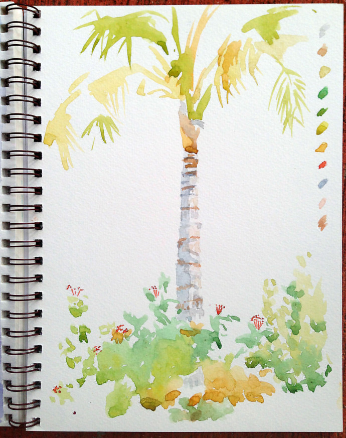 palm-bronstein-watercolor